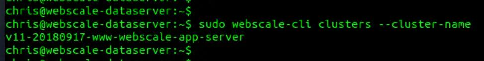 webscale-cli-cluster-name